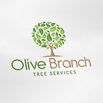 Olive Branch Tree Services Logo Design
